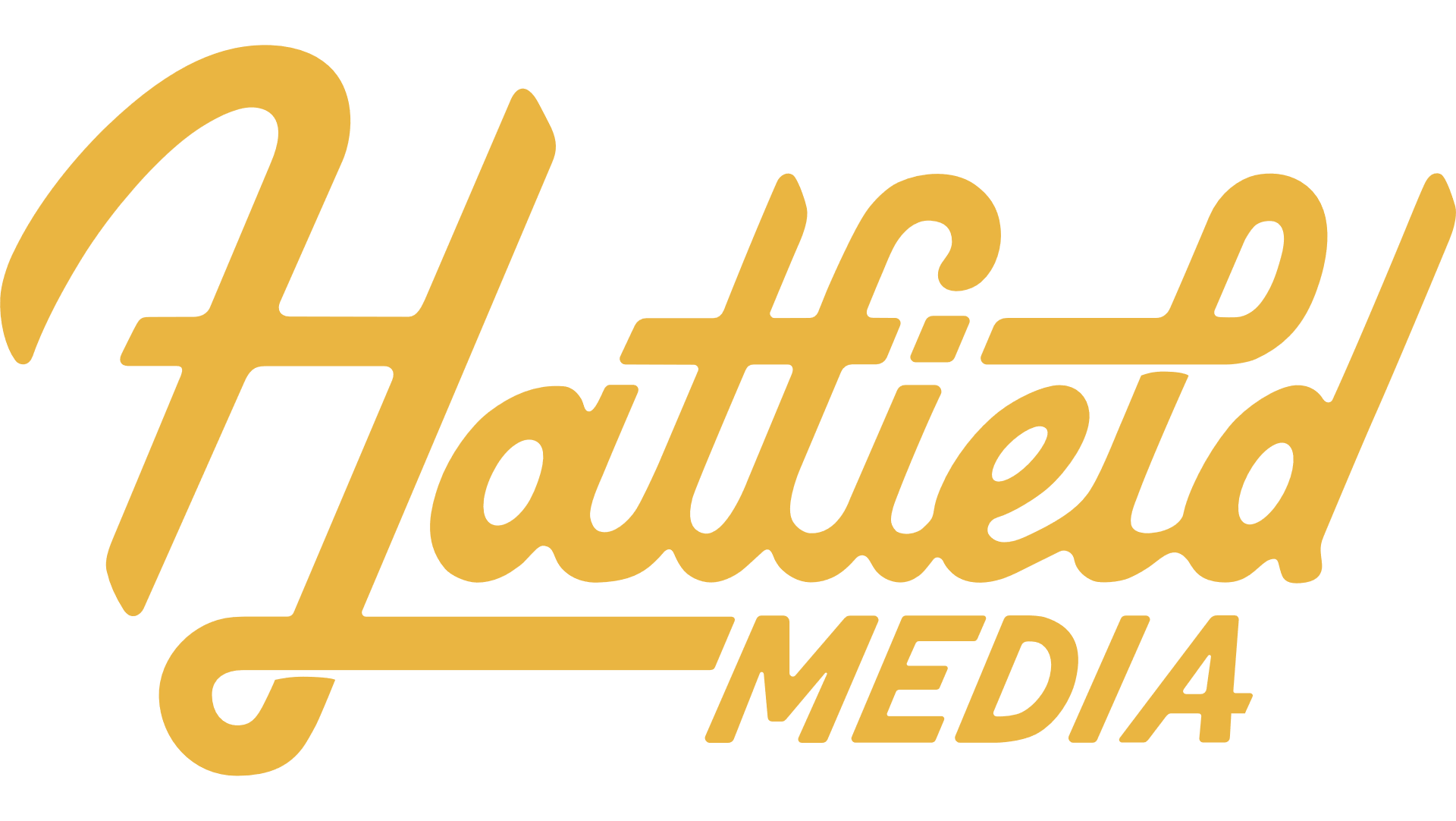 Website Design & Marketing Agency - Hatfield Media